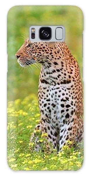 Botswana Leopard  Galaxy Case