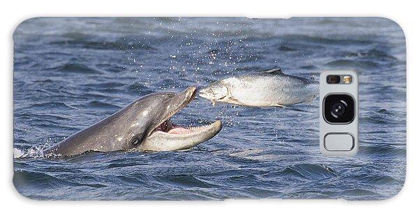 Bottlenose Dolphin Eating Salmon - Scotland  #36 Galaxy Case