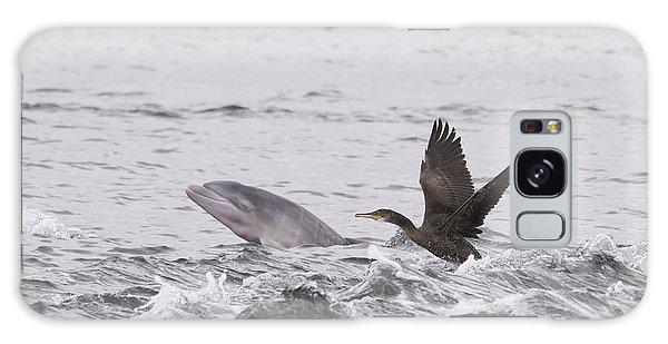 Baby Bottlenose Dolphin - Scotland #10 Galaxy Case
