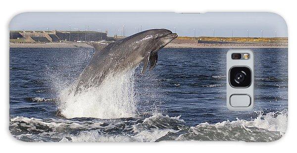 Bottlenose Dolphin - Scotland  #26 Galaxy Case
