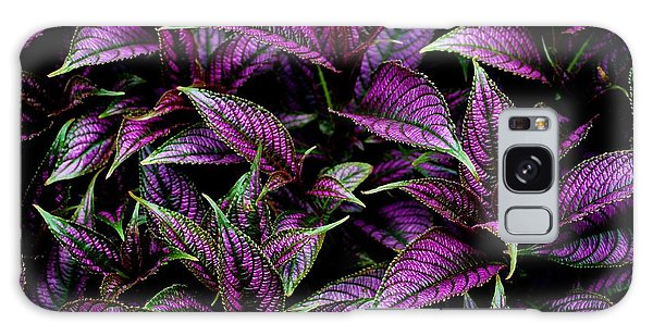 Bouquet Of Persian Shield Galaxy Case