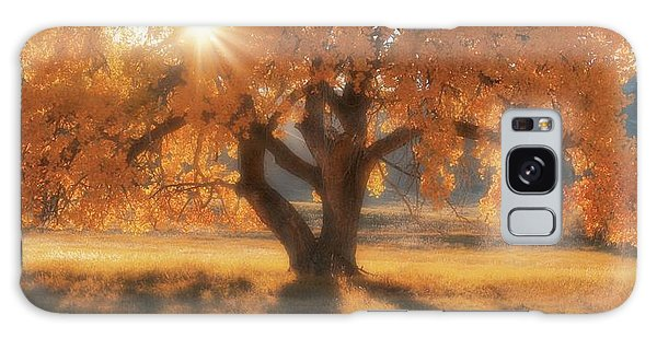 Boxelder's Autumn Tree Galaxy Case