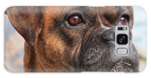 Boxer Portrait Galaxy Case