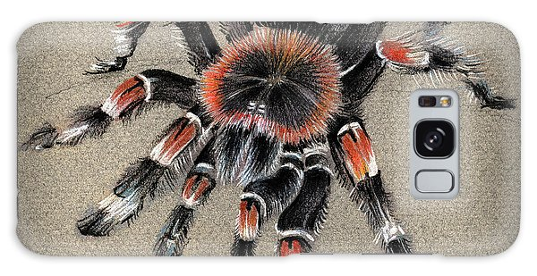 Brachypelma Smithi  Mexican Red Knee Tarantula Galaxy Case
