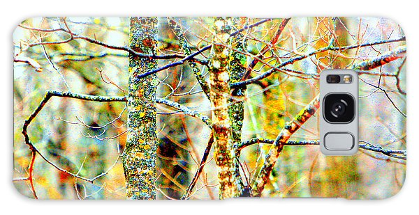 Branches Galaxy Case