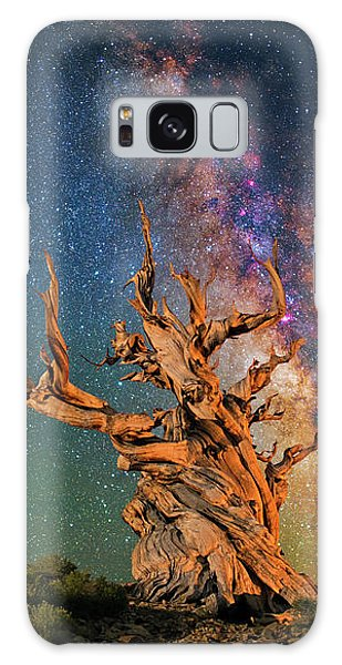 Branching Out Galaxy Case
