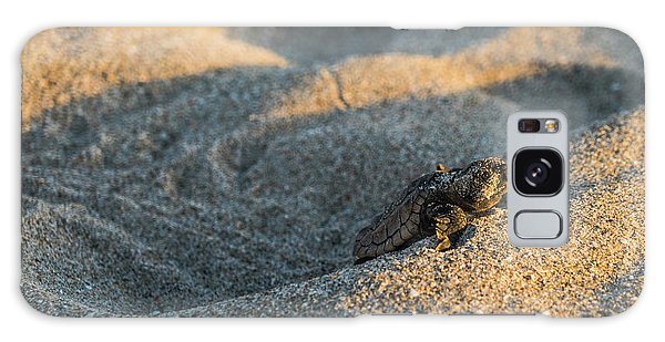 Brave Beginnings Sea Turtle Hatchling Delray Beach Florida Galaxy Case