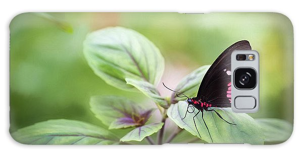 Galaxy Case featuring the photograph Brave Butterfly  by Cindy Lark Hartman