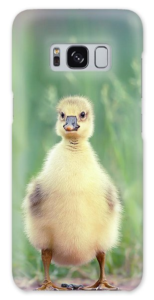 Gosling Galaxy Case - Brave New Baby - Gosling Ready To Conquer The World by Roeselien Raimond