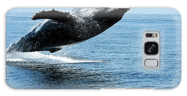 Breaching Humpback Whales Happy-2 Galaxy Case
