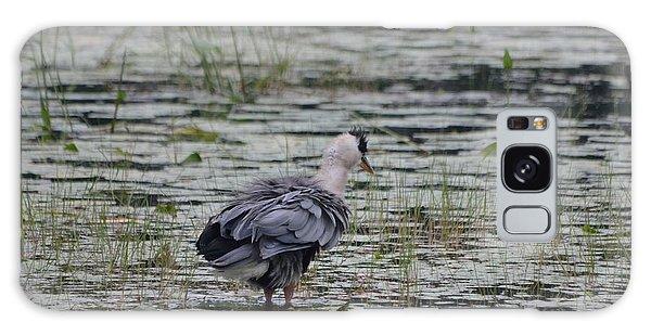 Breezy Blue- Great Blue Heron Galaxy Case by David Porteus