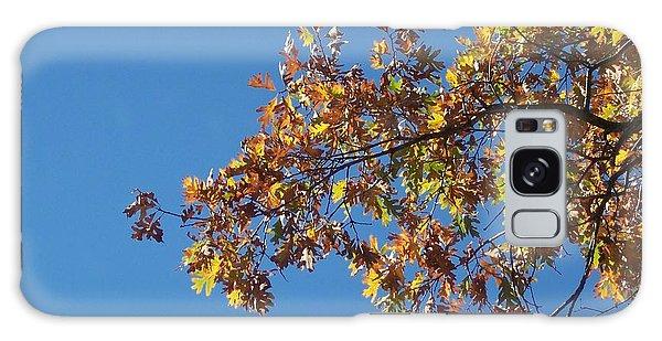 Bright Autumn Branch Galaxy Case