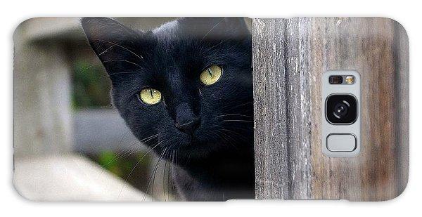 Bright Eyed Kitty Galaxy Case