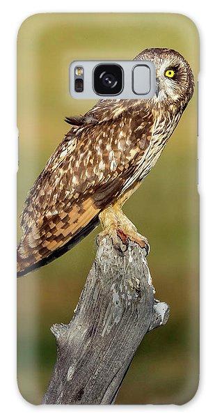 Bright-eyed Owl Galaxy Case