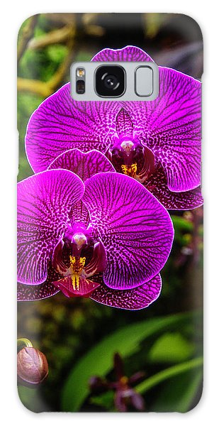 Orchidaceae Galaxy Case - Bright Purple Orchids by Garry Gay