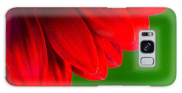 Bright Red Chrysanthemum Flower Petals And Stamen Galaxy Case