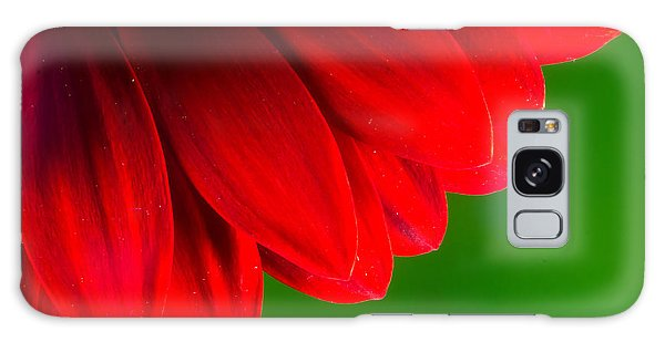 Bright Red Chrysanthemum Flower Petals And Stamen Galaxy Case