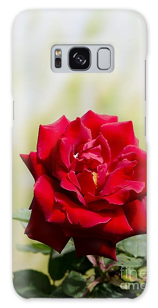 Bright Red Rose Galaxy Case by Perry Van Munster