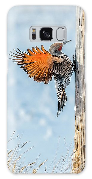 Brilliant Northern Flicker Woodpecker Galaxy Case