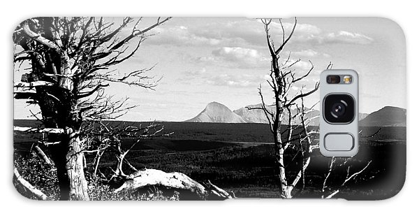 Bristle Cone Pines With Divide Mountain In Black And White Galaxy Case