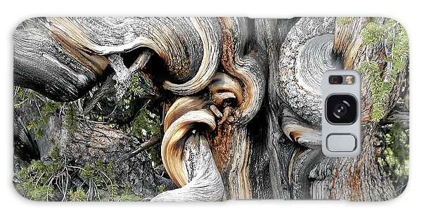 Bristlecone Pine - 'i Am Not Part Of History - History Is Part Of Me' Galaxy Case