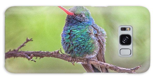 Broad-billed Hummingbird 3652 Galaxy Case