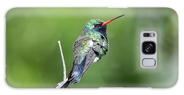 Broad-billed Hummingbird Galaxy Case