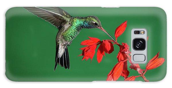 Broad-billed Hummingbird  Galaxy Case