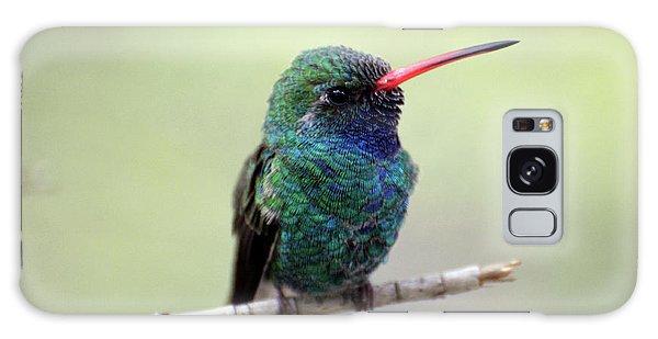 Broad-billed Hummingbird Portrait Galaxy Case