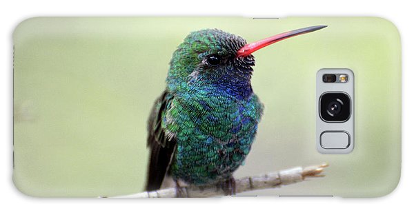 Broad-billed Hummingbird Portrait Galaxy Case