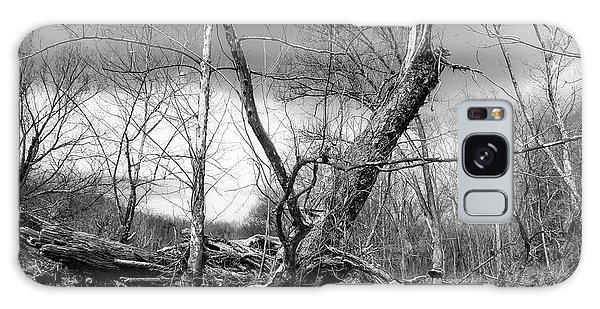 Galaxy Case featuring the photograph Broken Tree by Alan Raasch