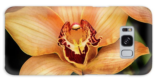 Brookside Orchid Galaxy Case