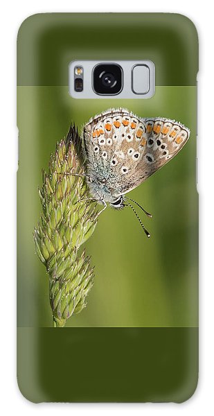 Brown Argus Galaxy Case