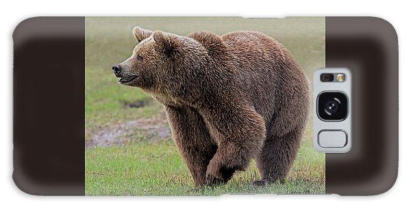 Brown Bear 14.5 Galaxy Case