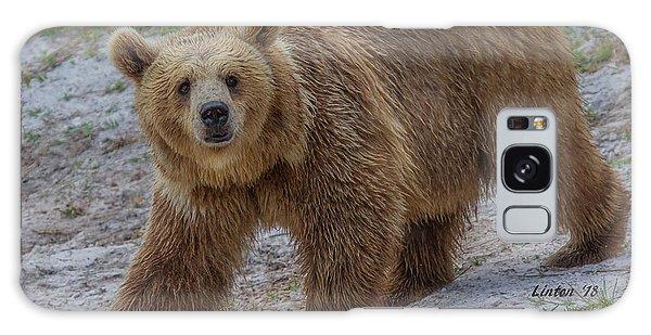Brown Bear 3 Galaxy Case