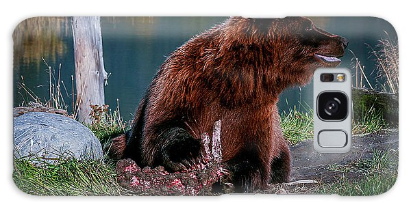 Brown Bear And Magpie Galaxy Case