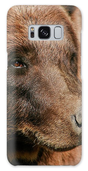 Brown Bear Galaxy Case