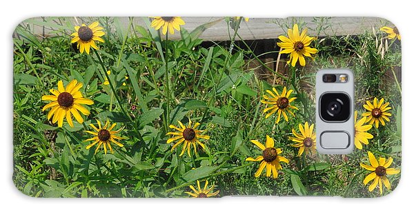 Brown Eyed Susans Galaxy Case by Robyn Stacey