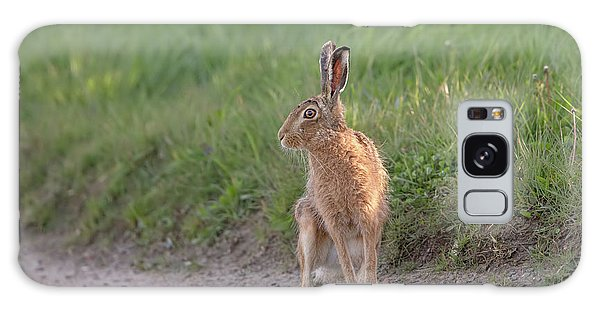 Brown Hare Listening Galaxy Case