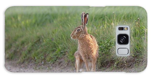 Brown Hare Listening Galaxy Case