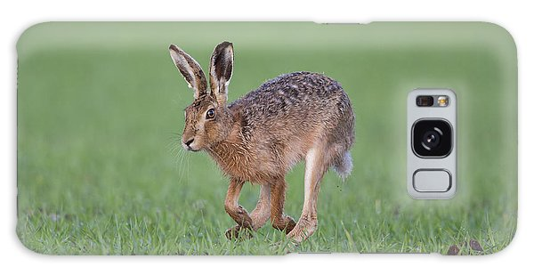 Brown Hare Running Galaxy Case