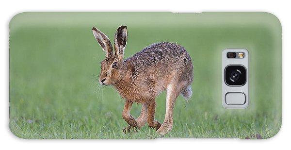 Brown Hare Running Galaxy Case