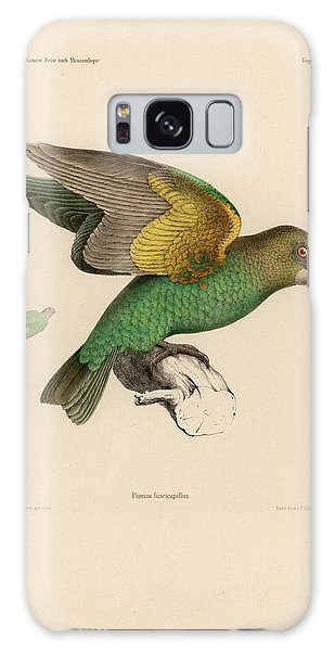 Brown-headed Parrot, Piocephalus Cryptoxanthus Galaxy Case by J D L Franz Wagner