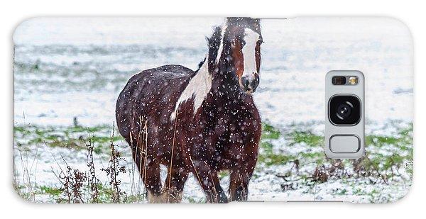 Brown Horse Galloping Through The Snow Galaxy Case