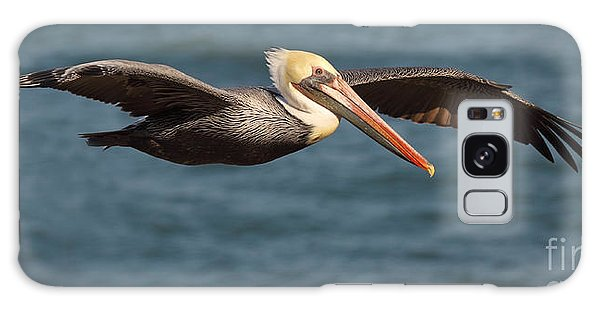 Brown Pelican Flying By Galaxy Case