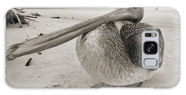 Pelican Galaxy Case - Brown Pelican Folly Beach Morris Island Lighthouse Close Up by Dustin K Ryan