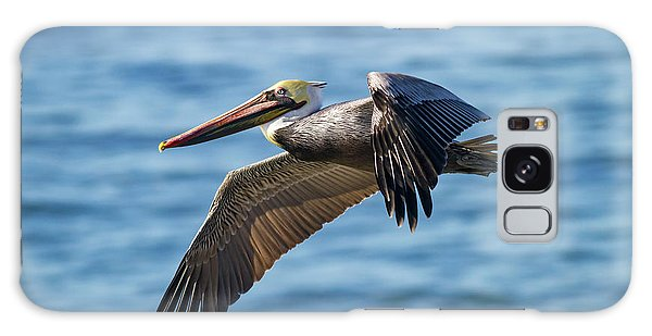 Brown Pelican In Flight Galaxy Case
