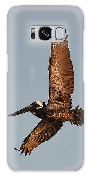 Brown Pelican In Flight No. 2 Galaxy Case