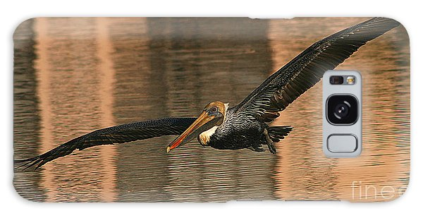 Brown Pelican On A Sunset Flyby Galaxy Case