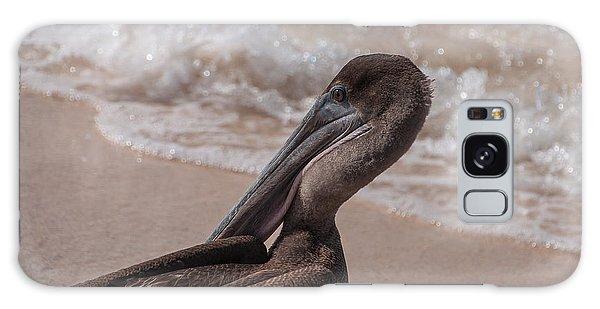 Brown Pelican On Las Bachas Beach Santa Cruz Indefatigable Island  Galapagos Islands Galaxy Case